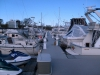 north-yard-dock